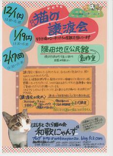 猫の譲渡会.jpg